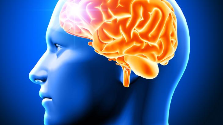 3D render of a male head showing brain
