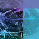 Clinical Updates on Disease Modifying Therapies to Improve Outcomes for Patients with Multiple Sclerosis
