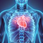 Navigating the Role of PCSK9 Inhibitors in the Prevention of Cardiovascular Events