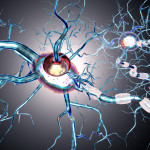nerve cells, concept for neurodegenerative and neurological disease, tumors, brain surgery. 3d rendering