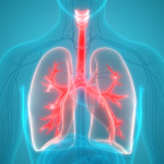 Scientific Updates for the Advanced Management of Idiopathic Pulmonary Fibrosis